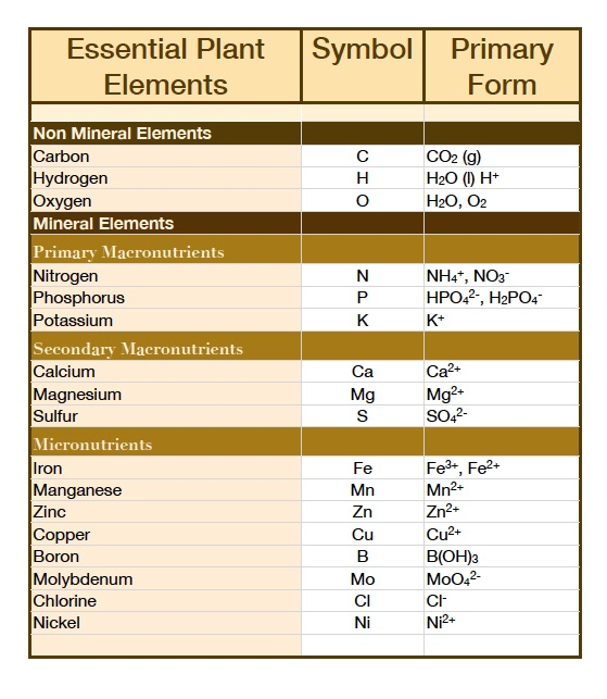 Essential Plant Nutrient chart in ionic form