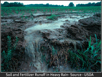 Fertilizer runoff