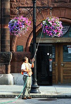 Watering flower baskets